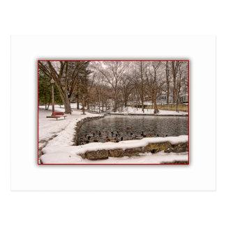 Charca del pato en postal de la nieve del invierno