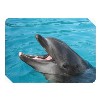 Charla del delfín invitación 12,7 x 17,8 cm