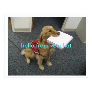 charla del veterinario postal