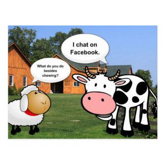 Charla divertida del facebook del dibujo animado postal