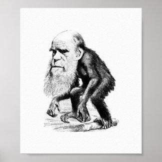 Charles Darwin como mono Póster