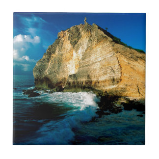 Chateaux Guadalupe del DES de Pointe de la playa Azulejos