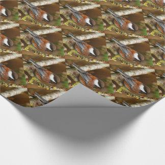 Chickadee Castaña-Apoyado lindo en el peral Papel De Regalo