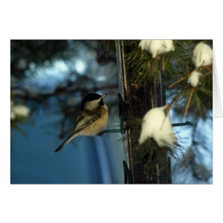 Chickadee dulce tarjeta pequeña