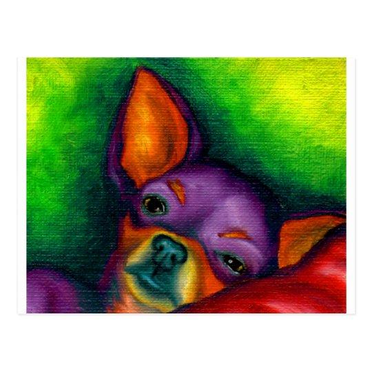 Chihuahua colorida postal