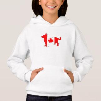 Chihuahua de Canadá