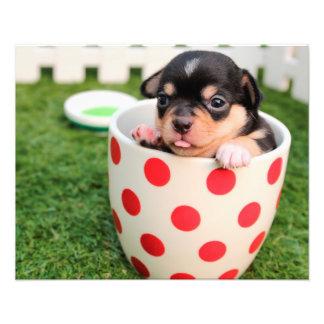 Chihuahua linda del perro de perrito en una taza arte fotografico