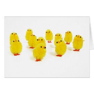 Chillin del imán del polluelo con mi foto tarjeta