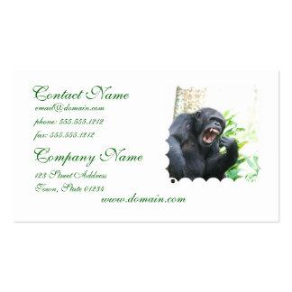 Chimpancé que descubre tarjetas de visita de los d