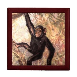 chimpanzeehangingintree002_original caja de joyas