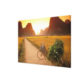 China, Guangxi. Yangzhou, bicicleta en país Impresiones En Lienzo Estiradas