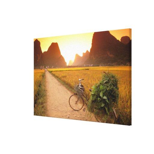 China, Guangxi. Yangzhou, bicicleta en país Impresión En Lona