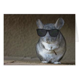 Chinchilla del pez gordo tarjeta de felicitación