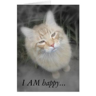 Chistoso consiga una mejor pronto tarjeta del gato