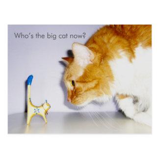 """Chistoso """"quién ahora es el gato grande?"""" Postal"""