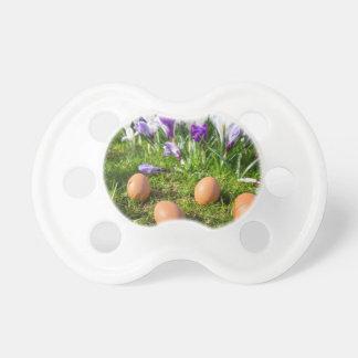Chupete Cinco huevos flojos que mienten cerca de azafranes