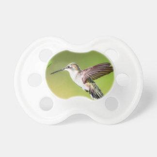Chupete Colibrí en vuelo