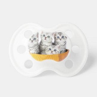 Chupete Cuatro gatos jovenes que se sientan en cuenco de