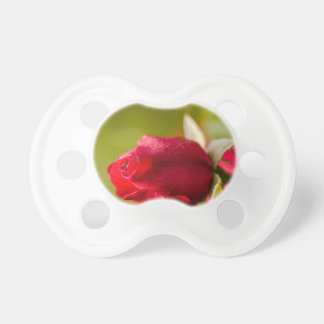 Chupete Diseño ascendente del cierre del rosa rojo