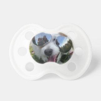 Chupete Gafas de sol en el FUTURO BRILLANTE del perro para