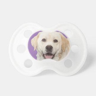 Chupete Labrador retriever 1