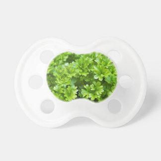 Chupete Modelo verde de la hierba del perejil