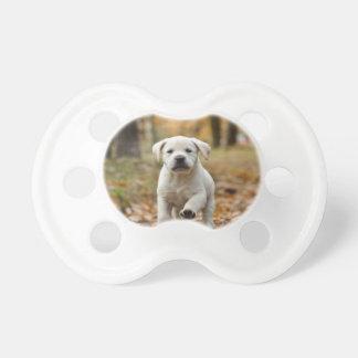 Chupete Perrito del labrador retriever