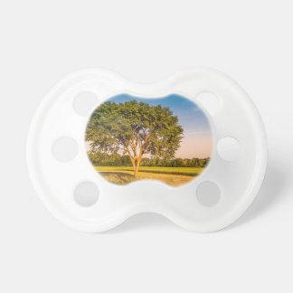 Chupete Tetina de bebé, fotografía de un árbol en unos