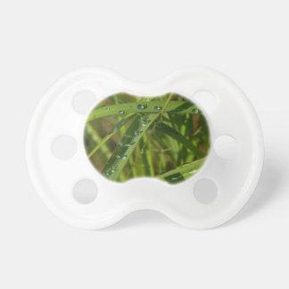 Chupete Tetina de bebé, hierba con el rocío