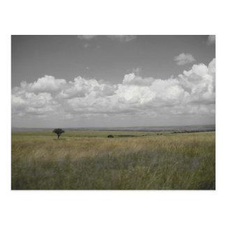Cielo del Masai Postal