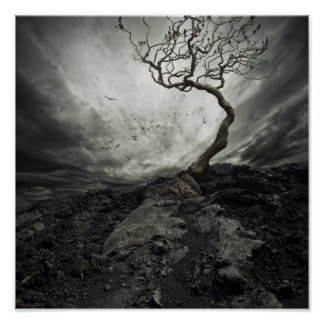 Cielo dramático sobre árbol solo viejo póster