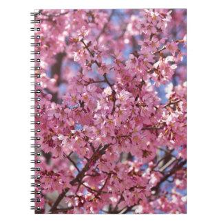 Cielo rosado de la flor de cerezo de Sakura Libretas Espirales
