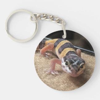 Cierre del Gecko del leopardo encima del llavero
