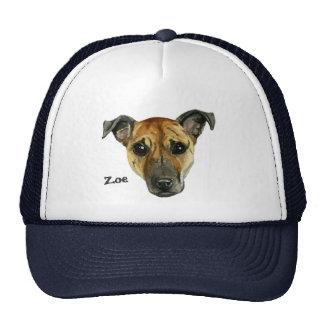 Cierre del perro del pitbull encima de la pintura gorras de camionero