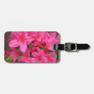 Cierre oscuro del rosa de la azalea etiqueta para maletas