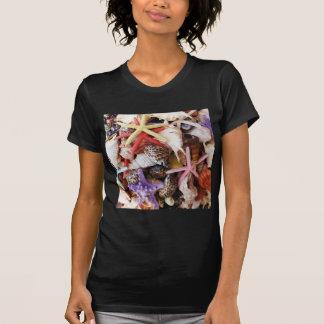 Ciérrese encima de las fotos de las estrellas de camisetas