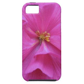 Ciérrese para arriba de la flor rosada iPhone 5 Case-Mate fundas