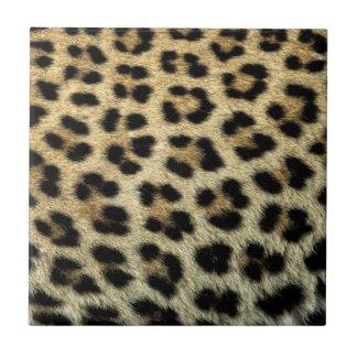 Ciérrese para arriba de los puntos del leopardo, azulejo cuadrado pequeño