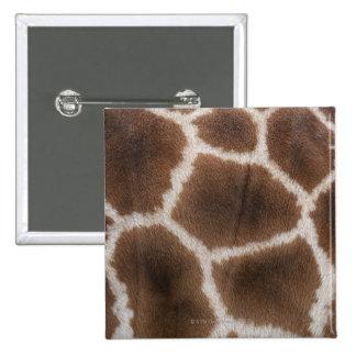 Ciérrese para arriba de piel de las jirafas chapa cuadrada