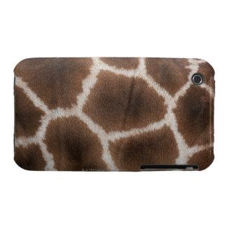 Ciérrese para arriba de piel de las jirafas funda bareyly there para iPhone 3 de Case-Mate