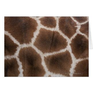 Ciérrese para arriba de piel de las jirafas tarjeta de felicitación