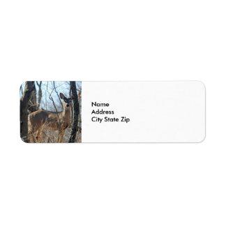 Ciervos 784 etiqueta de remite