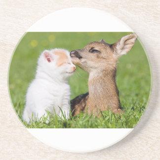Ciervos del bebé y abrazo del gatito posavasos de arenisca