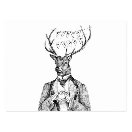 Ciervos del de agradecimiento tarjeta postal