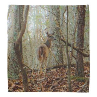 Ciervos en la madera. Camuflaje de Camo Bandanas