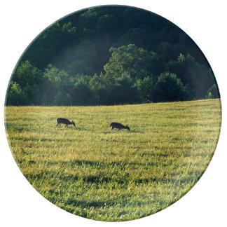 Ciervos que pastan plato de porcelana