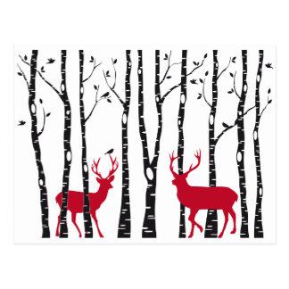 Ciervos rojos en bosque del árbol de abedul postal