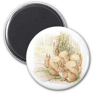 Cinco ardillas imán redondo 5 cm