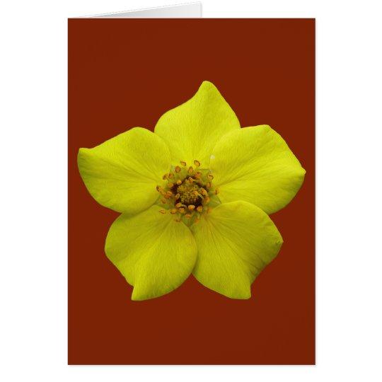 Cinquefoil arbustivo #1 tarjeta de felicitación