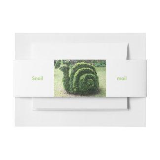 Cintas Para Invitaciones El paquete del caracol del Topiary de 25 únicos